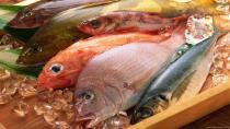 'Ucuz balık' İçin Biraz Daha Bekleyelim!